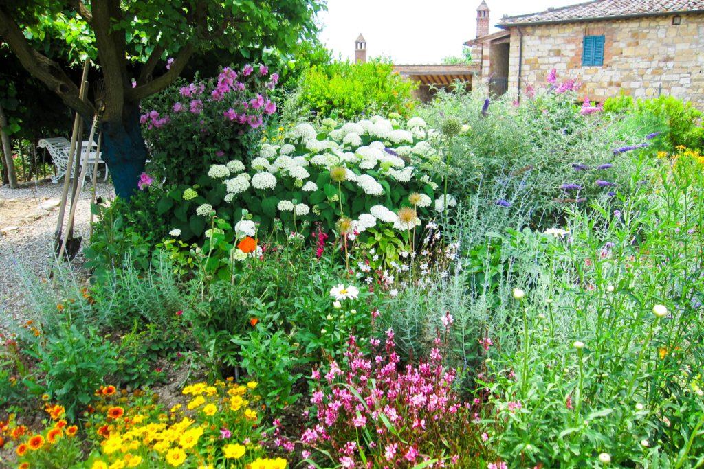 Borgo Argenina garden