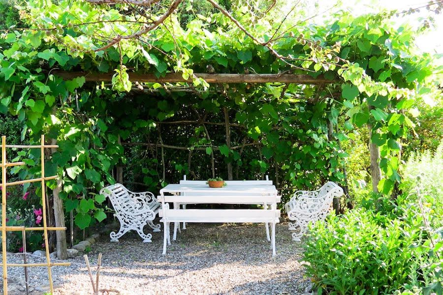Romantic pergola in the garden