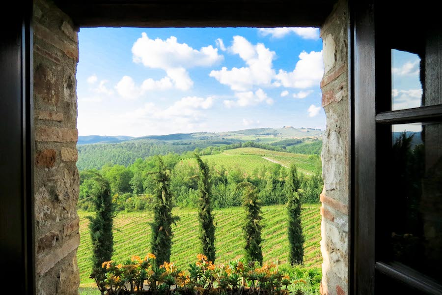 View on chianti vineyards from Villa Oliviera