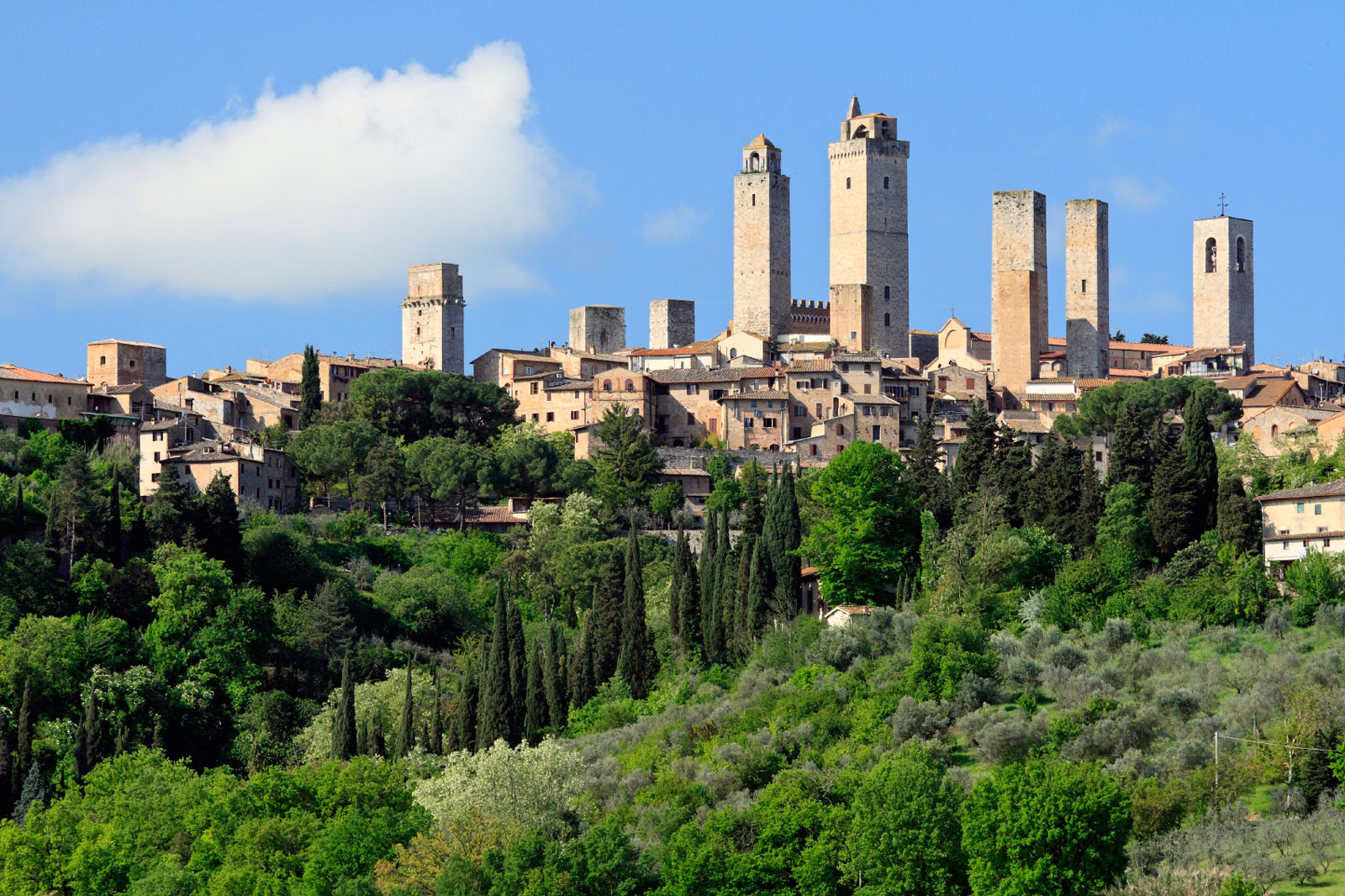View on San Gimignano