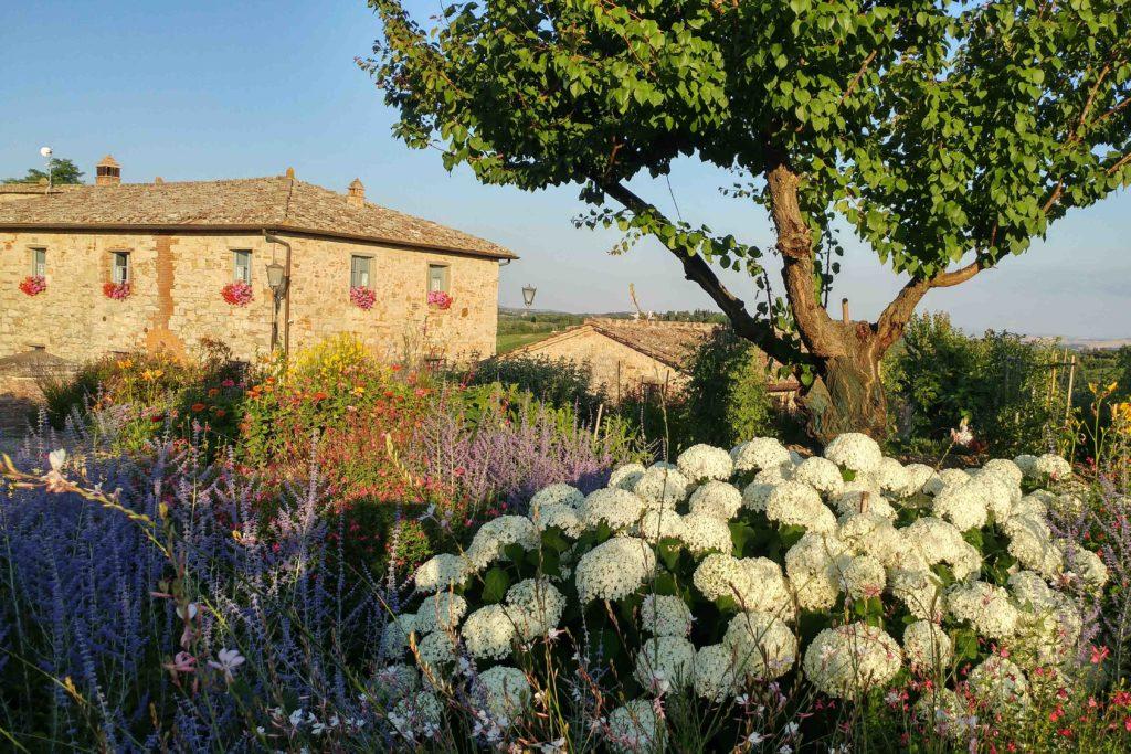 Villa Oliviera outside - Chianti Siena Tuscany villas