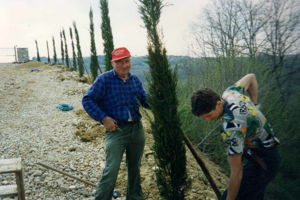 Workers planting cypresses