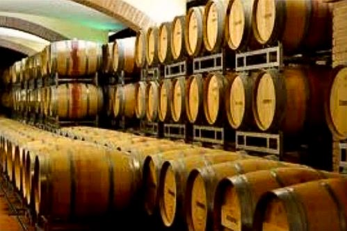 capannelle - Best wineries in Chianti Siena Tuscany
