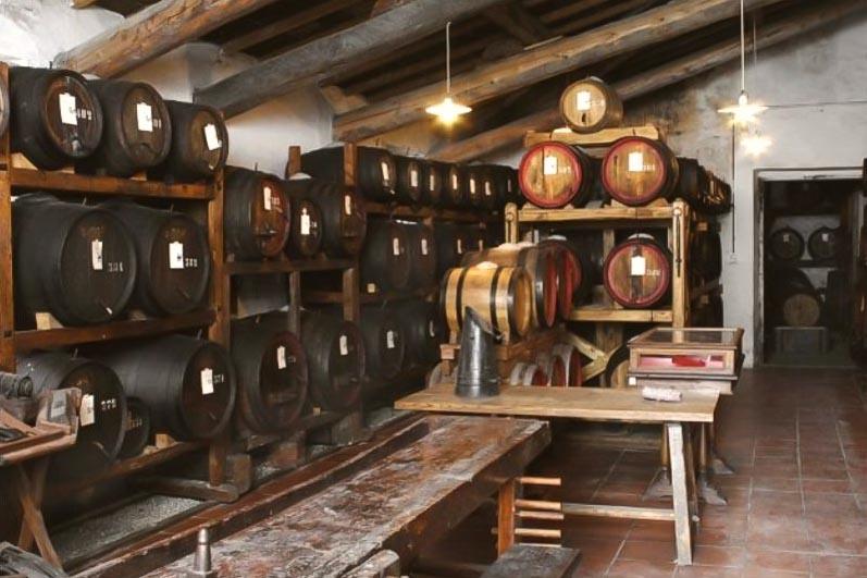 montagliari - Best wineries in Chianti Siena Tuscany