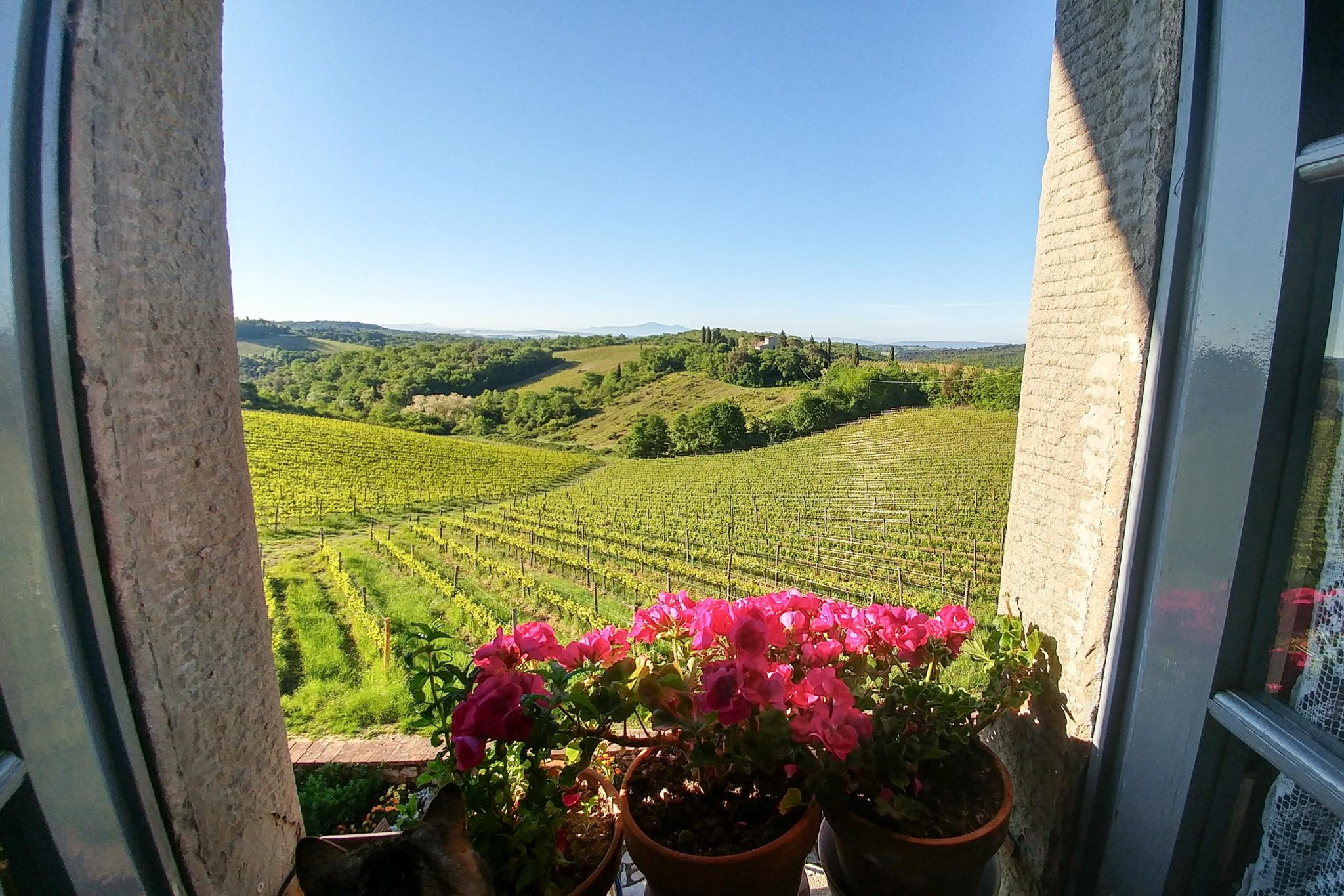 View from Double Flora Rooms&Suites - bed and breakfast in Chianti Siena Tuscany