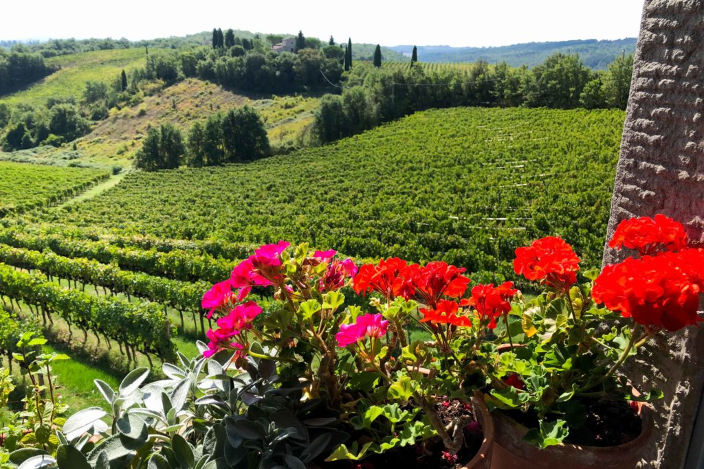 View of Suite Gaura - bed and breakfast in Chianti Siena Tuscany