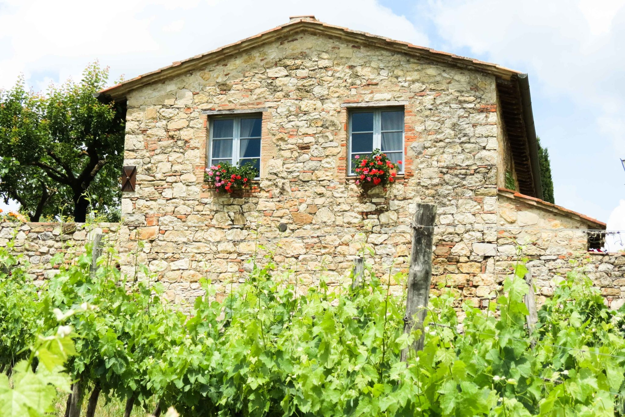 Piccola villa outside - bed and breakfast in Chianti Siena Tuscany