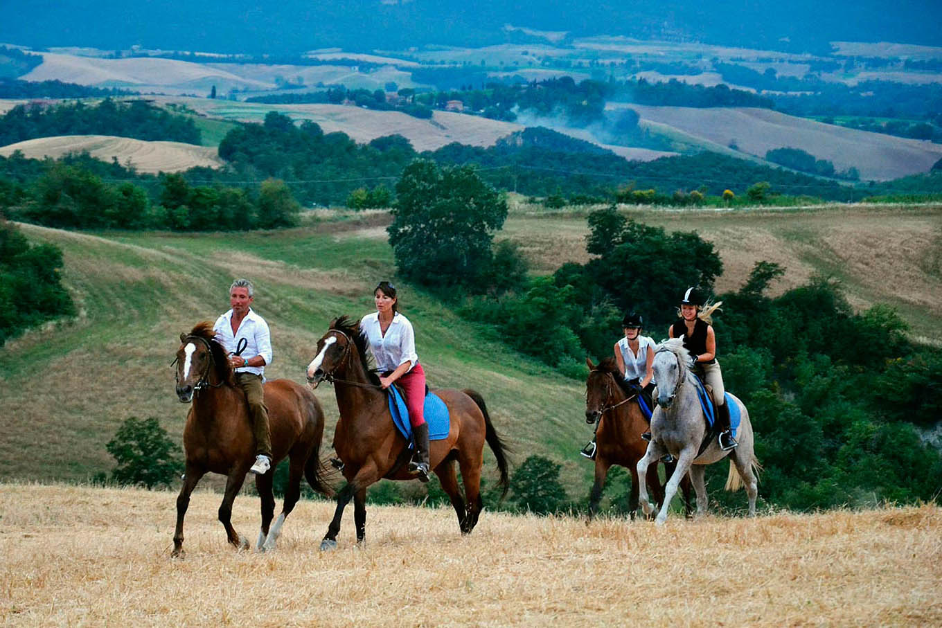 horses, things to do in Tuscany - Things to do in Chianti Siena Tuscany