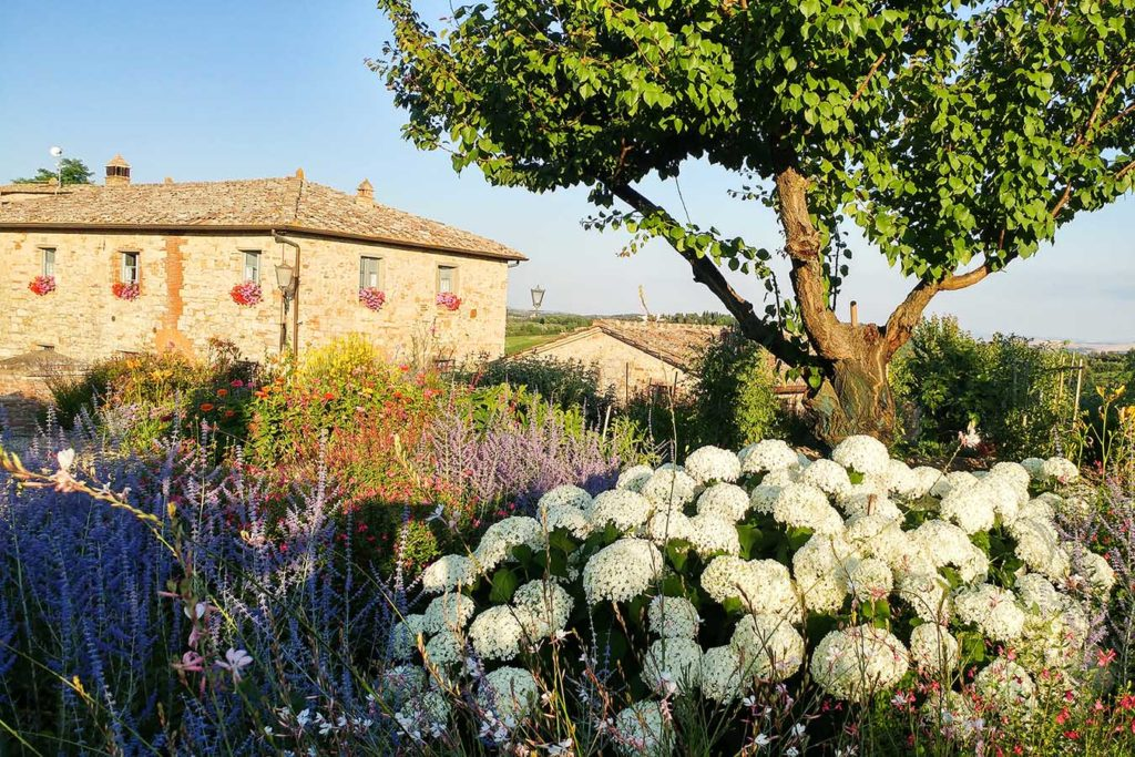 Borgo Argenina view - bed and breakfast Chianti Siena Tuscany
